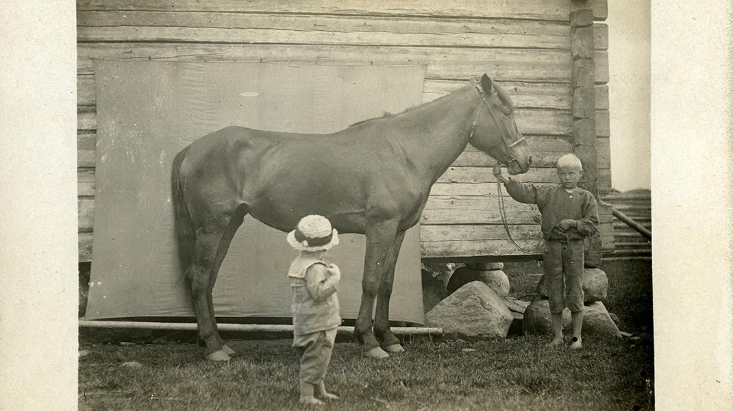 Kaksi lasta ja hevonen seinän vierustalla.