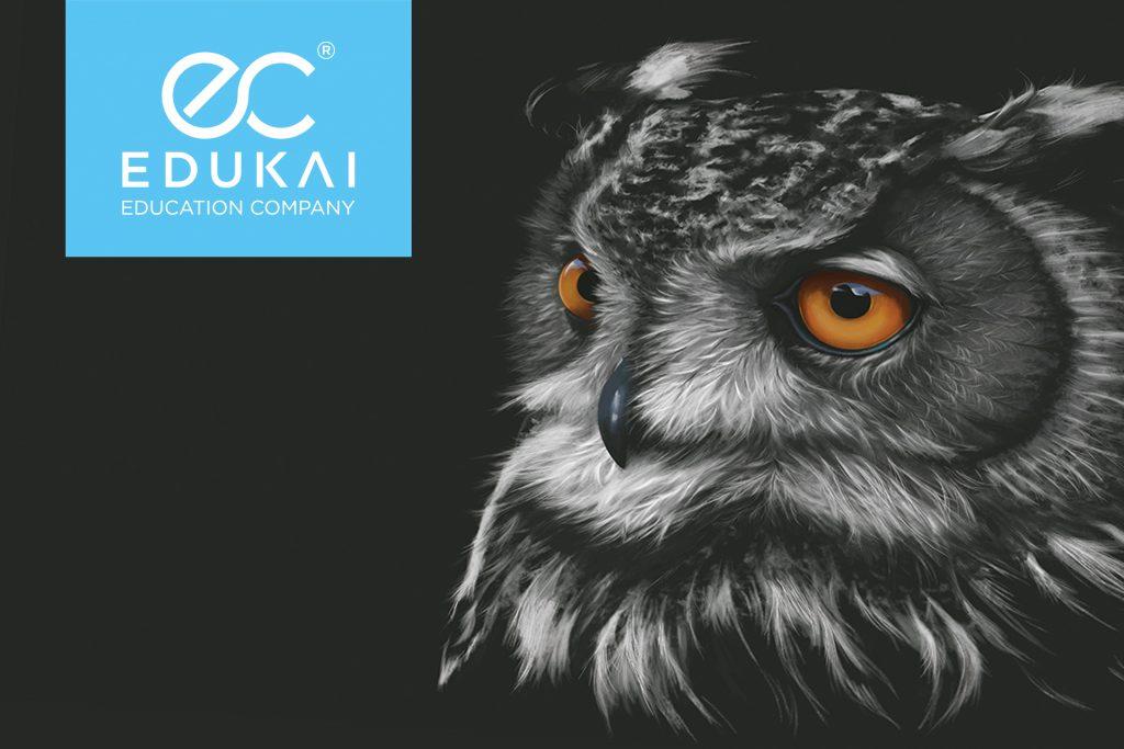 Edukain logo ja pöllö