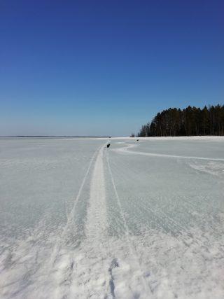 Oulujärven jäällä