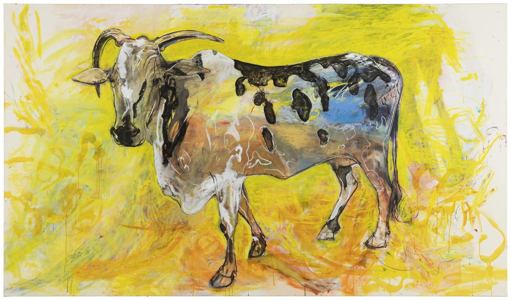 Kuva teoksesta: Marjatta Tapiola, Intian lehmä, 2019, öljy kankaalle. Yksityiskokoelma